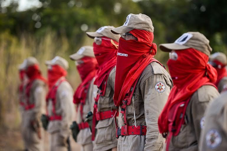 Alunos bombeiros participam de treinamento do Ciopaer de combate a incêndio  unnamed